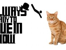 The Always Ready To Dive In Show Episode 11 – Petting Is So Passé