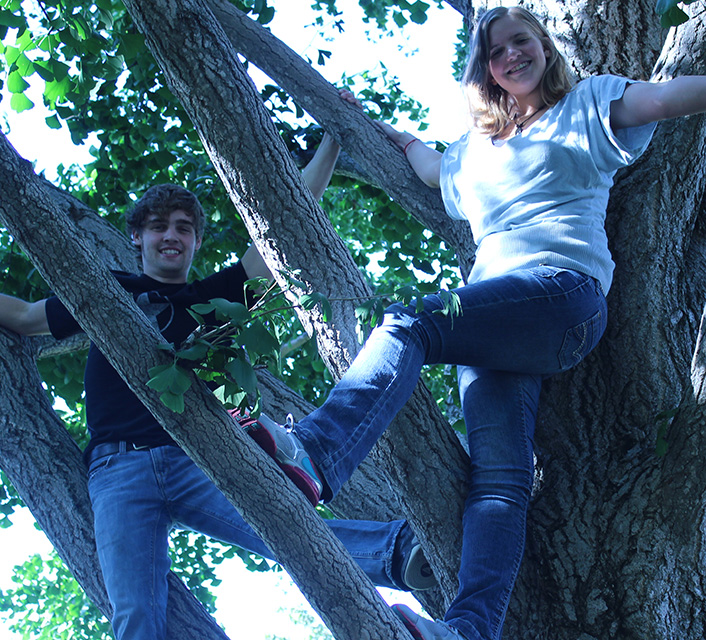 guy and girl in tree
