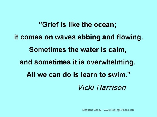 Sayings About Sorrow: Good Grief: What Should I Do For My Grieving Friend