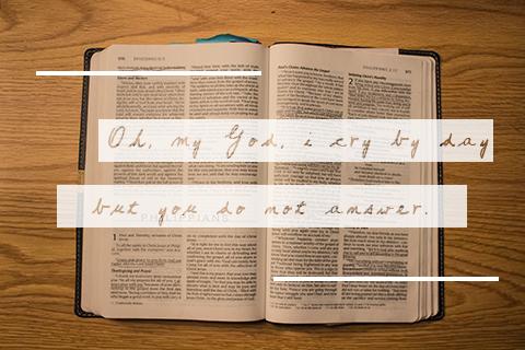web page bible