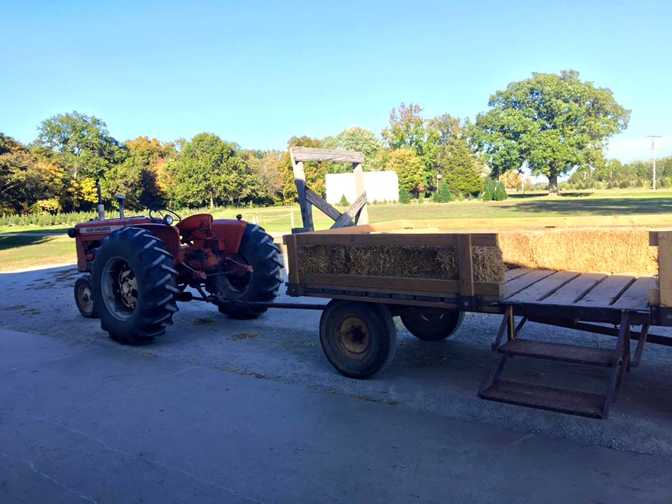 Enjoy the ride out to the pumpkin patch! Source: Kelsey Neier
