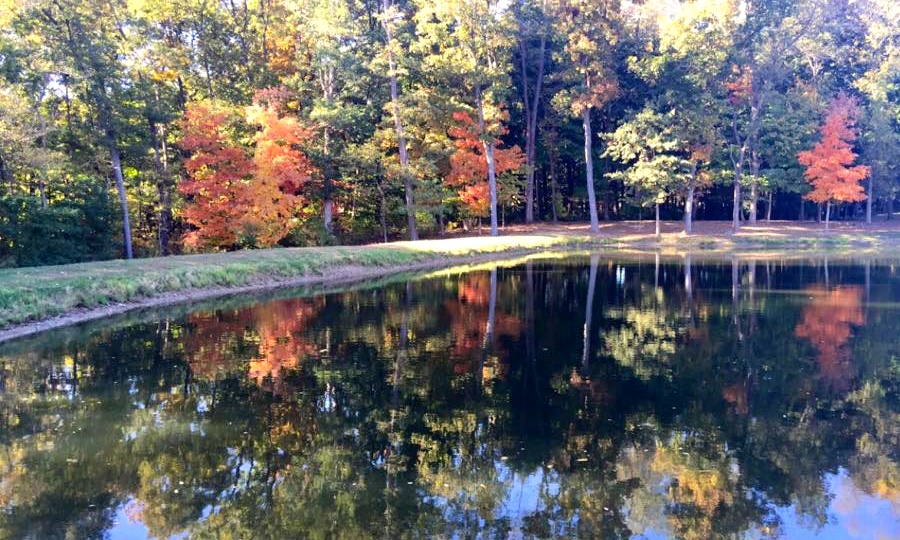 Check out the beautiful scenery at Daniken. Source: Kelsey Neier