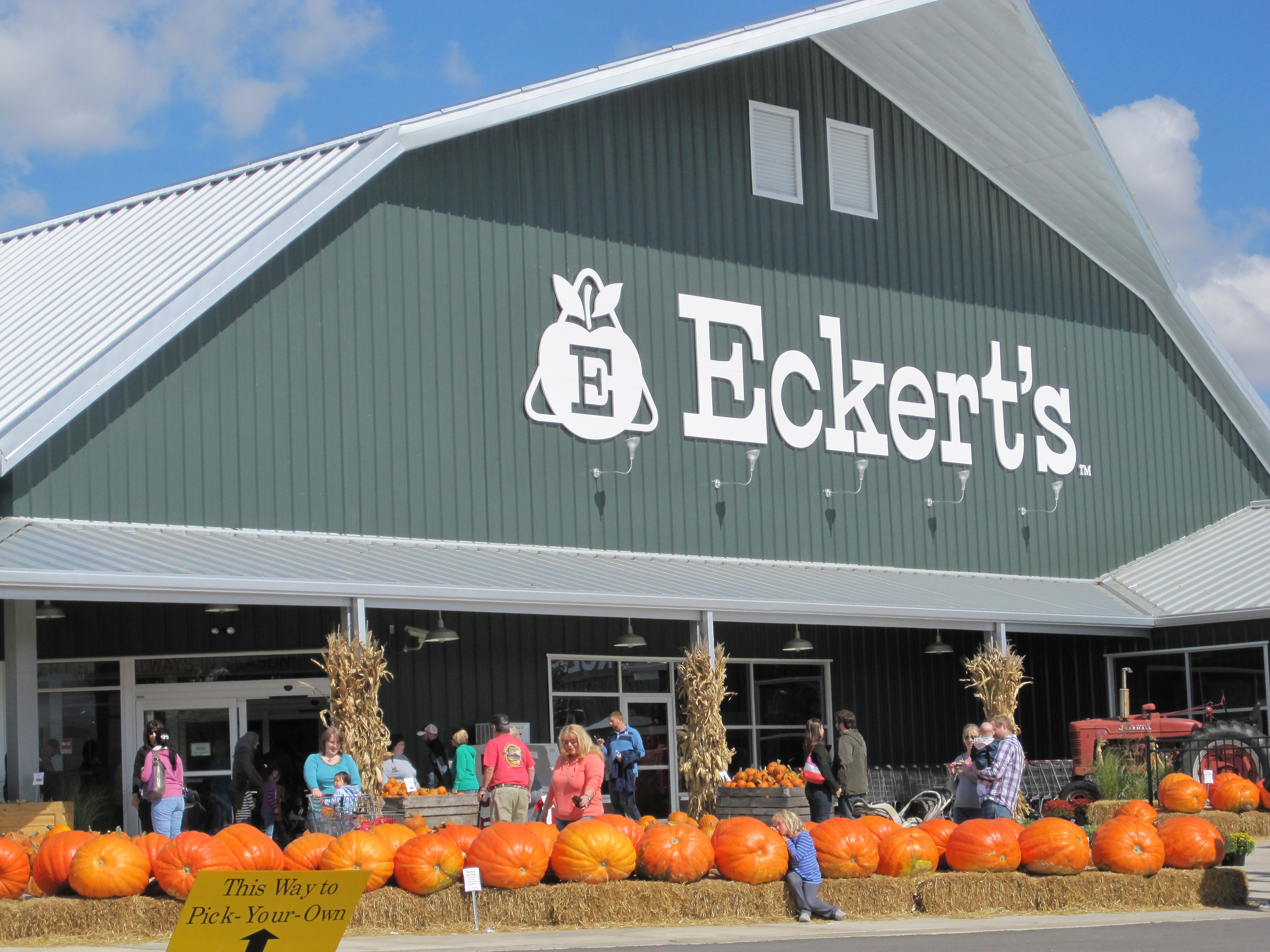 Image result for eckerts fall