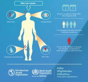 Source: www.paho.org/zikavirus