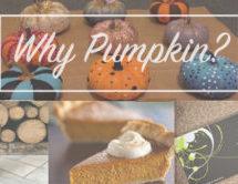 Pumpkin Flavored Frenzy