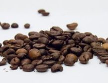 Did You Say Fresh Roasted Coffee Beans?