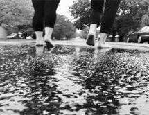 Go Take a Walk