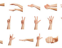 Gestures and Phrases
