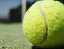 Men's Tennis Sweeps Over Franklin and Illinois