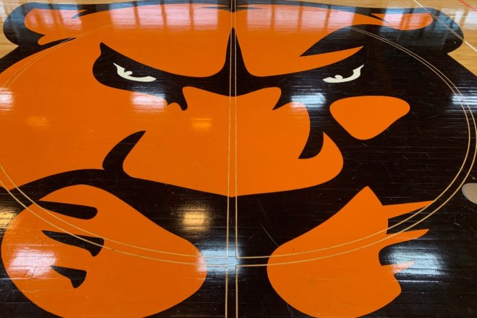 zoomed photo of the panther head on HJ Long Gym floor.